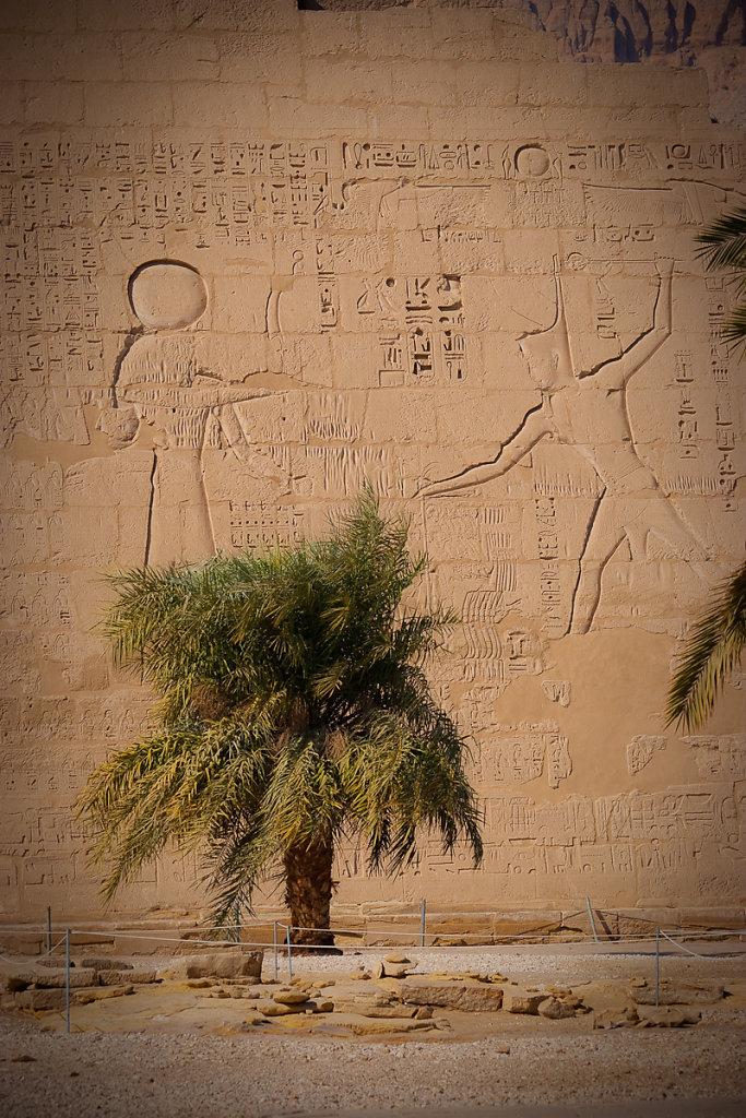 Egypt-20078-11.jpg