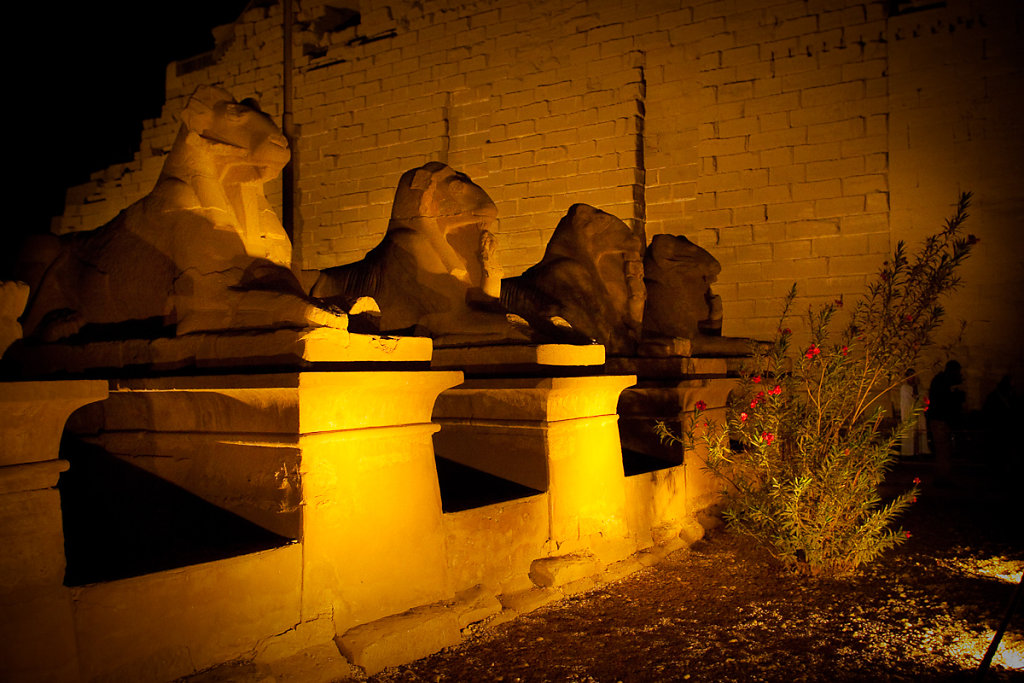 Egypt-20078-24.jpg