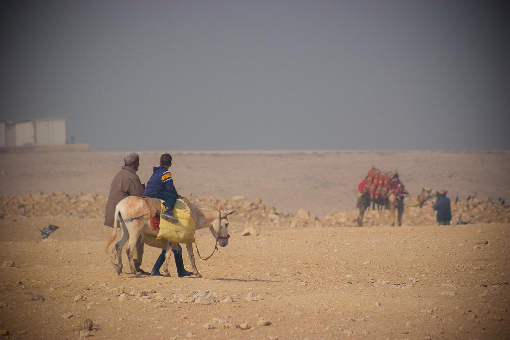 Egypt-20078-76.jpg