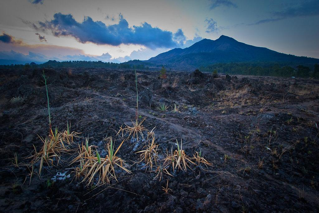 indonesia-108.jpg