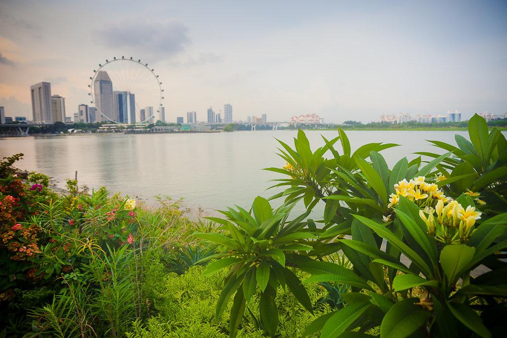 singapore-36.jpg