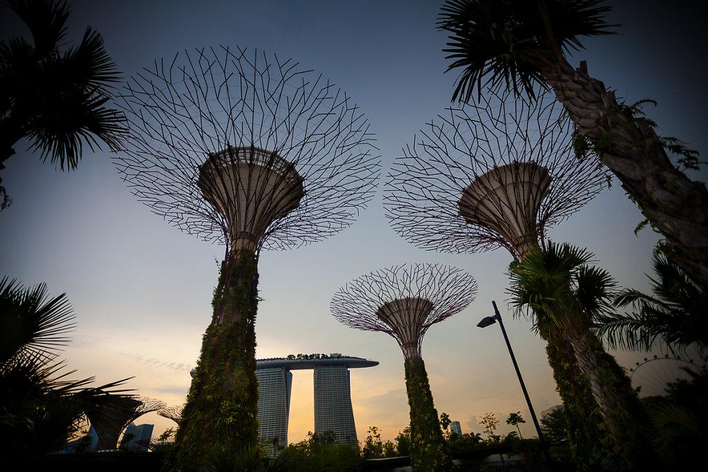 singapore-38.jpg