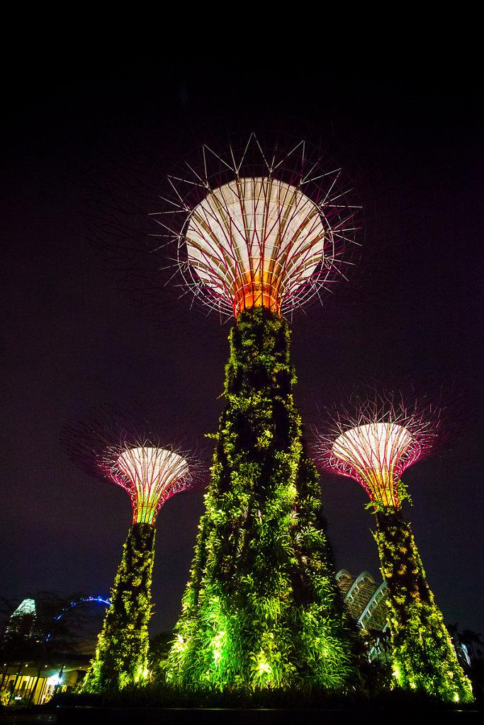 singapore-82.jpg