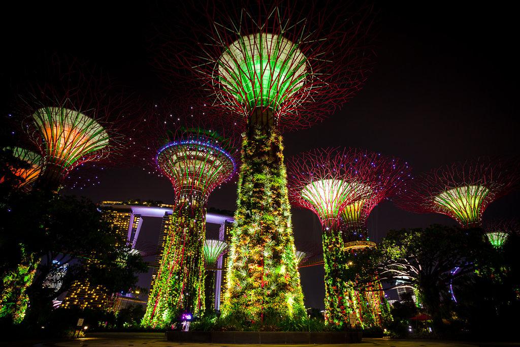 singapore-83.jpg