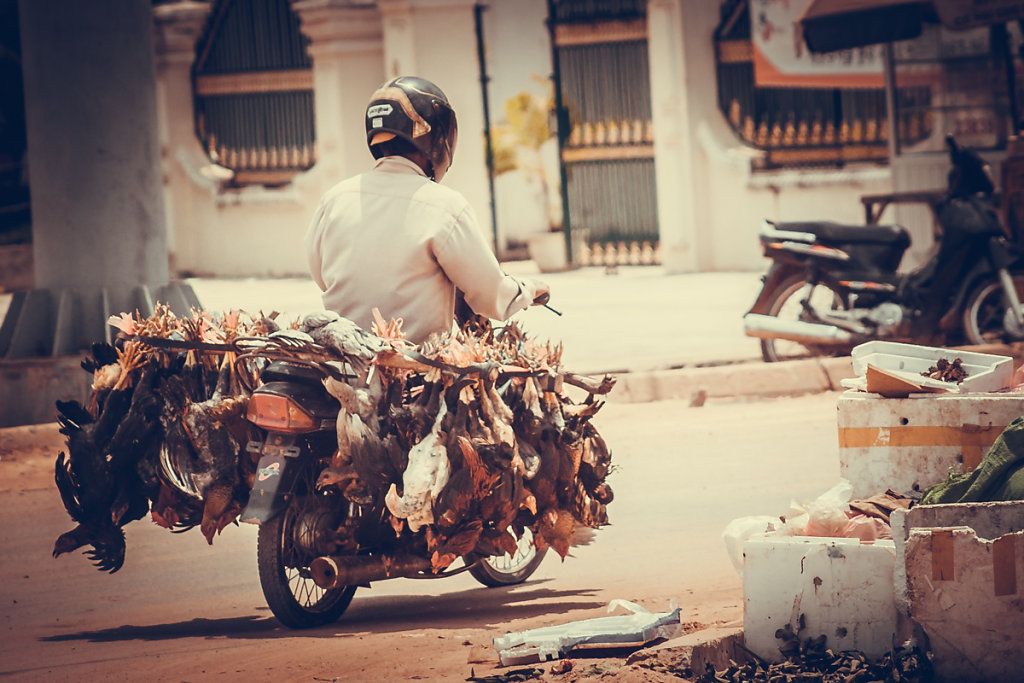 cambodia-16.jpg