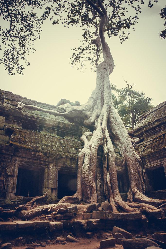 cambodia-68.jpg